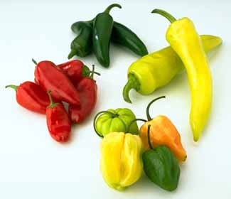 Tipos de chiles mexicanos | molletes y hambre y micerveza