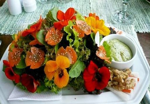 Las Flores Tambien Se Comen Molletes Y Hambre Y Micerveza