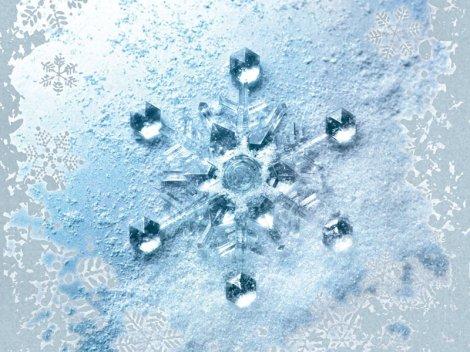 congelación