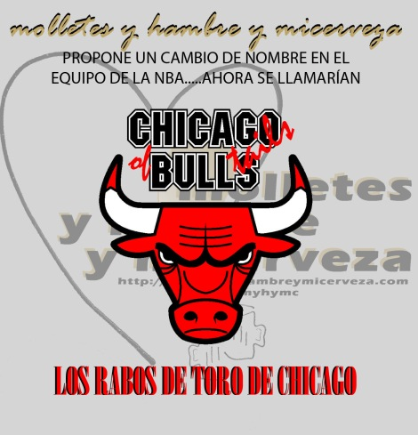 CHICAGO BULLS copia