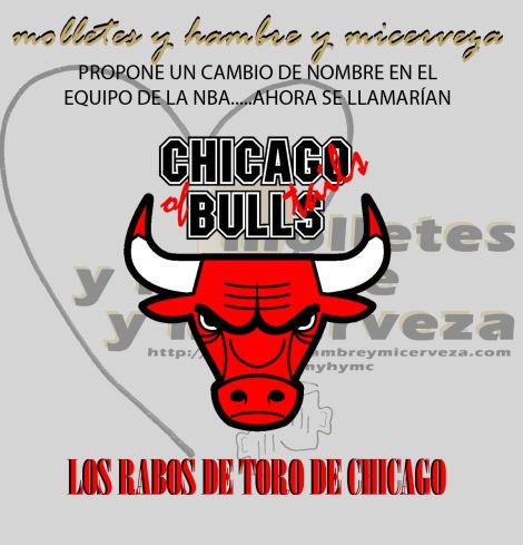 CHICAGO BULLS copia
