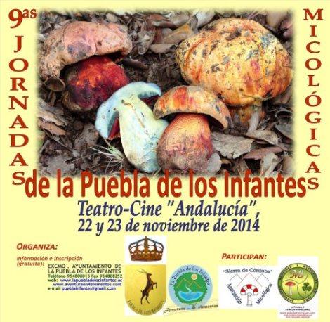 jornadas micologicas4fddba85e4f_cartelpuebla2014web1
